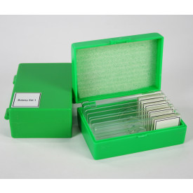 Botany Slide Kit - MA806